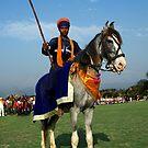 The Warrior-II by RajeevKashyap