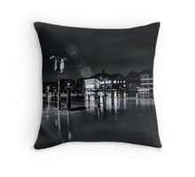 A winter's visit Throw Pillow