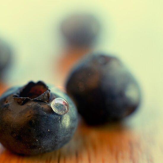 Blueberry portrait by Yuliya Art