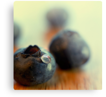 Blueberry portrait Metal Print