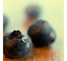 Blueberry portrait Photographic Print