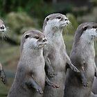 The Four Otts by ellismorleyphto