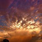 Nature's Splendor  by Angela  Ardis