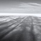 Field of Shadow - Winter Landscapes by melmoth