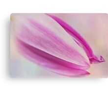 Magenta magic Canvas Print