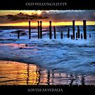 Old Willunga Jetty by Shannon Rogers