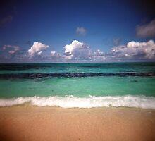The Beach On Bird Island by Derrick Peters