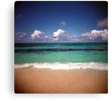 The Beach On Bird Island Canvas Print