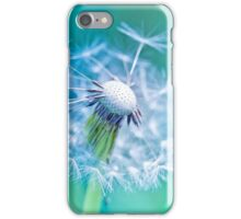 Beautiful white dandelion with seeds on aqua blue background iPhone Case/Skin