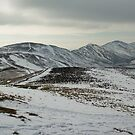 Pentland Hills - March by Thomas Fitzgerald