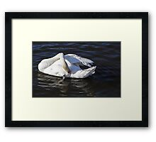 Wash and brush up Framed Print
