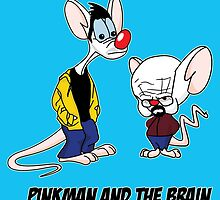 Pinkman and The Brain - Pinkman and Walter - Breaking Bad Parody - Pinky and the Brain Parody by bleedart