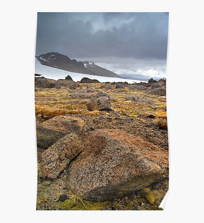 Alpine Winter Poster
