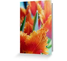 Flames of Spring Greeting Card