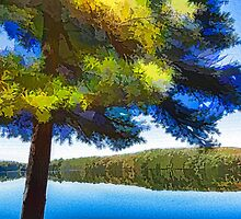 Sun and Shade Pine Tree On the Lake - Colorful Autumn Impressions by Georgia Mizuleva