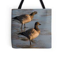 Light bellied brent goose Tote Bag