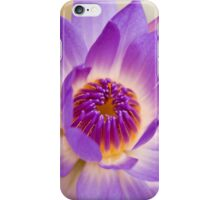 Shining Thru - purple waterlilly iPhone Case/Skin