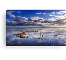 The Adventures Of A Solitary Dog Canvas Print