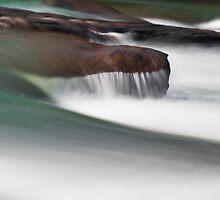 Arden Falls: Brush Strokes by LeeAnne Emrick