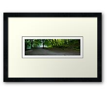 Plymbridge Woods Panoramic Framed Print