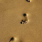 Footprints of a boy on a Hawaiian beach by Michael Brewer