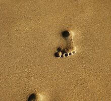 Footprints of a boy on a Hawaiian beach by Michael Brewer