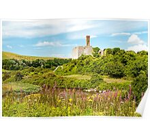Aberthaw Nature Reserve Poster