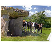 St Lythans Burial Chamber and Curious Cows Poster