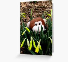 Spring Is A Great Time To get Outside Greeting Card