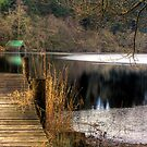 The Boathouse. by Paul Messenger