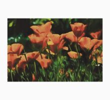 Brilliant Orange California Poppies - Impressions of Desert Spring T-Shirt