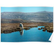 Horse Drinking at Mountain Pond Poster