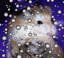 Hamsters Away by Beatriz  Cruz