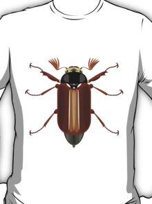 Cockchafer T-Shirt