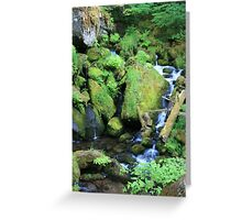 Mossy Rocks, White Water & Green Ferns Greeting Card
