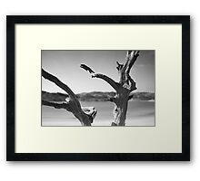 Everybody Was Kung-Fu Fighting Framed Print