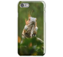 mohican in the rain iPhone Case/Skin