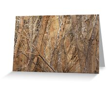 Trees Against Rock Greeting Card