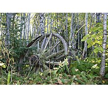 Old Wagon Wheels Photographic Print