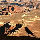 Over Canyonlands by Forrest L Smith