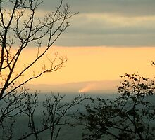 Blue Ridge Morning by Forrest L Smith