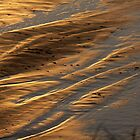 Patterns and Footprints in the Sand by aussiedi
