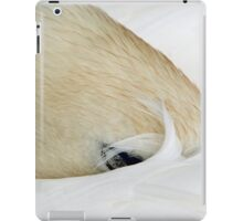 Sleeping Swan iPad Case/Skin