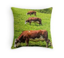 Three Cows in a row Throw Pillow