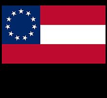 Stars & Bars, USA, America, First American National Flag, 11 stars, 1861 on black by TOM HILL - Designer