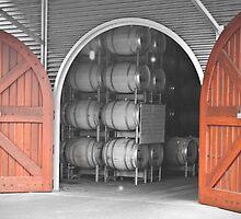 Cellar doors by pennyswork