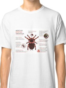 Infographic: Mexican redknee tarantula  Classic T-Shirt