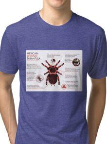 Infographic: Mexican redknee tarantula  Tri-blend T-Shirt