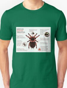 Infographic: Mexican redknee tarantula  T-Shirt