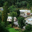 Walhalla, a Gold Village by Joe Mortelliti